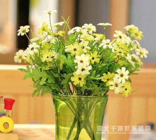 【上海装修】如何选择家居绿植 几款简单易搭花材搭配举荐